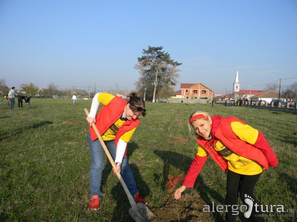 Fetele la plantat de copaci